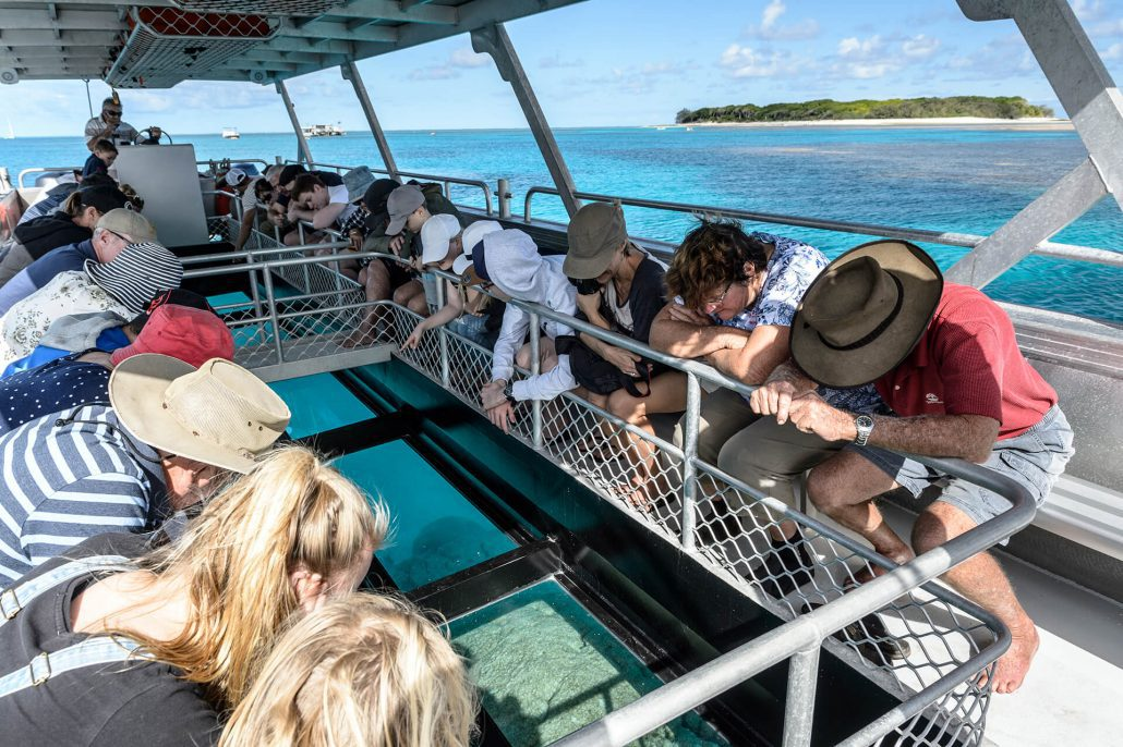 glass bottom boat lady musgrave experience