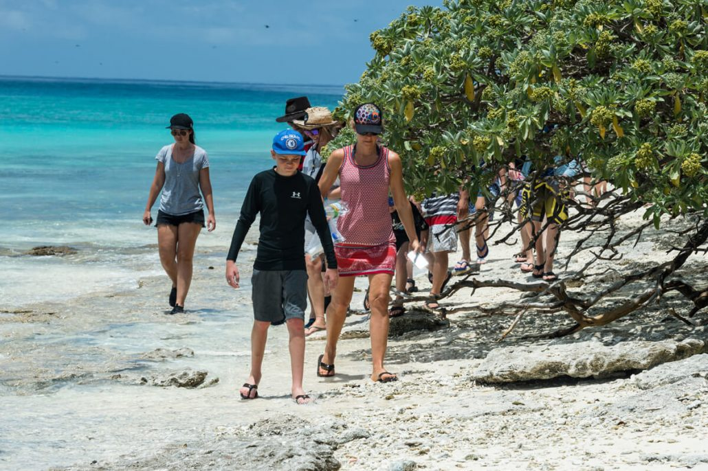 Guided Island Walk Tours Queensland Australia - Tropical Island People Walking Along Sandy Beach