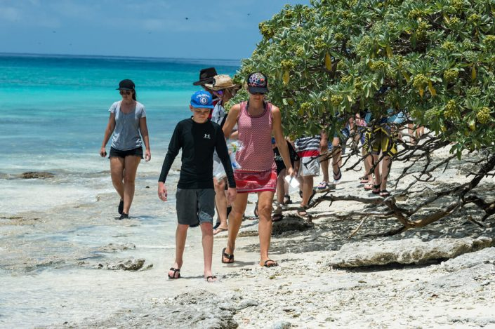 Guided Island Walk Tours Queensland Australia - Tropical Island People Walking Along Sandy Beach