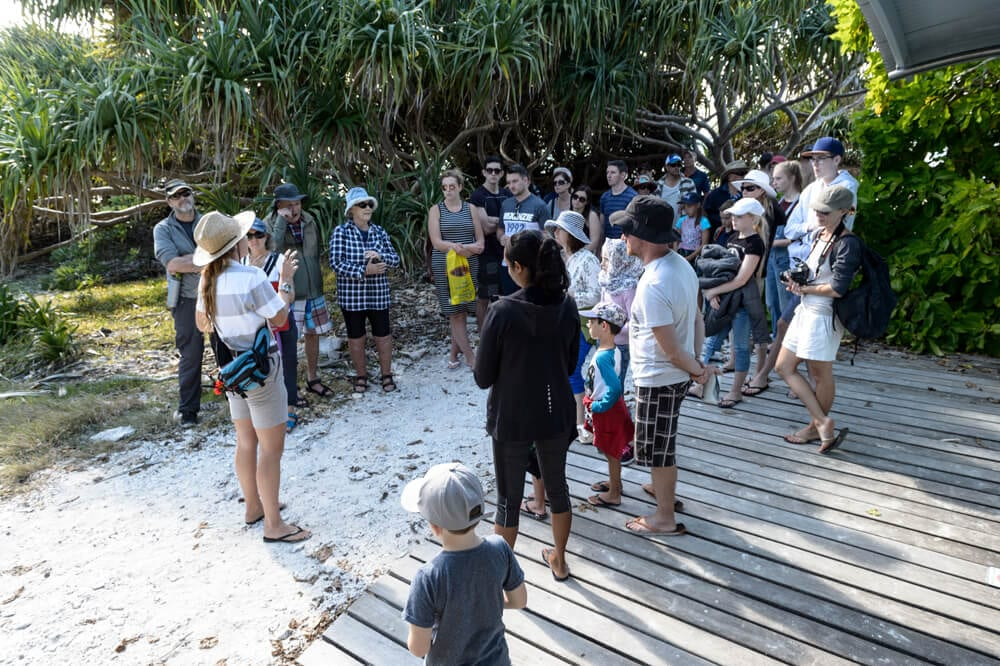 information presented guided island walk lady musgrave island