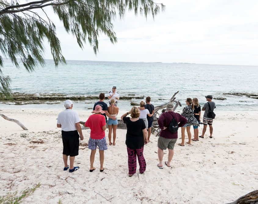 Island Walks With Marine Biologists - Lady Musgrave Island, Guided Island Tours
