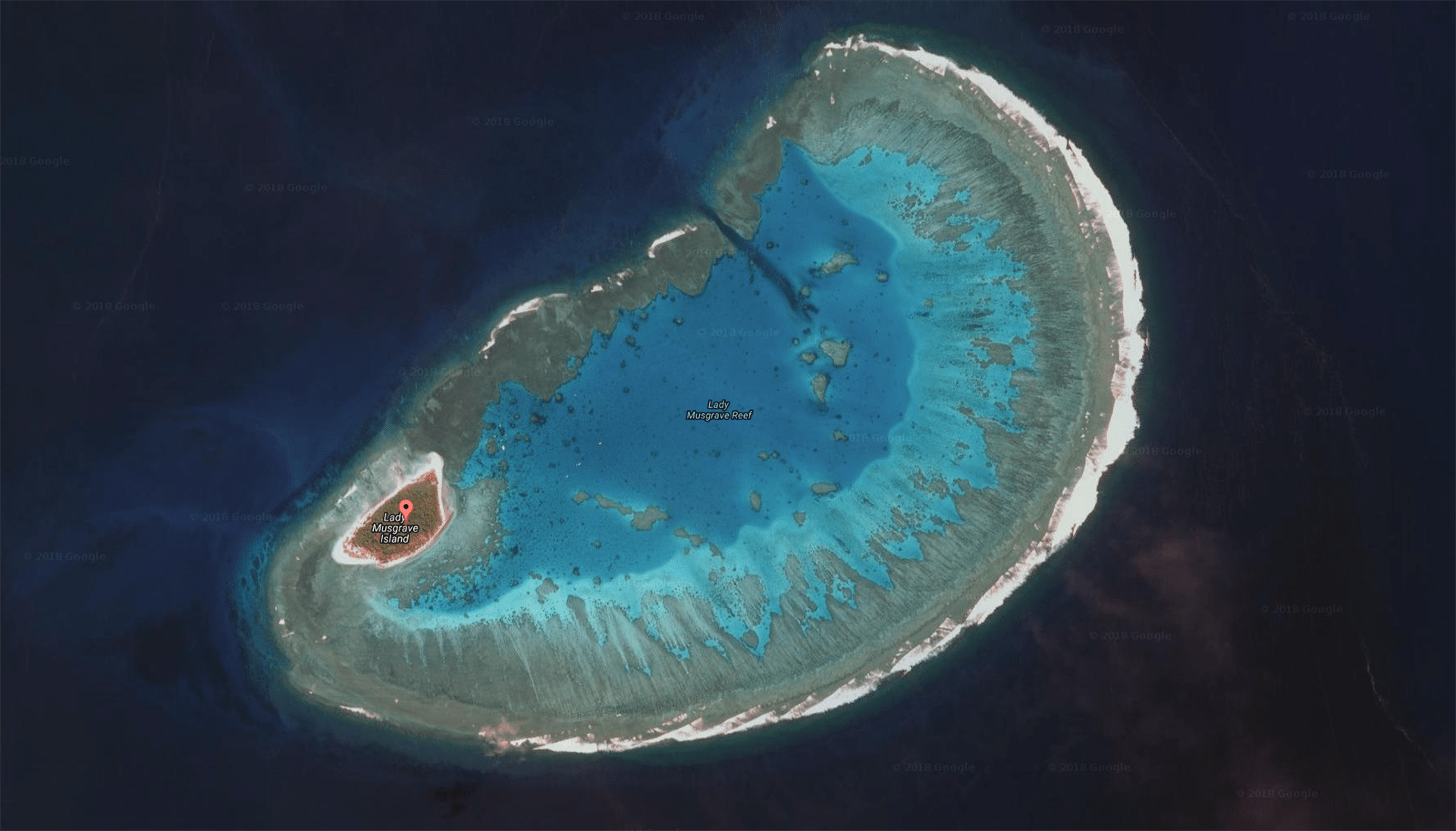 lady musgrave island dive sites