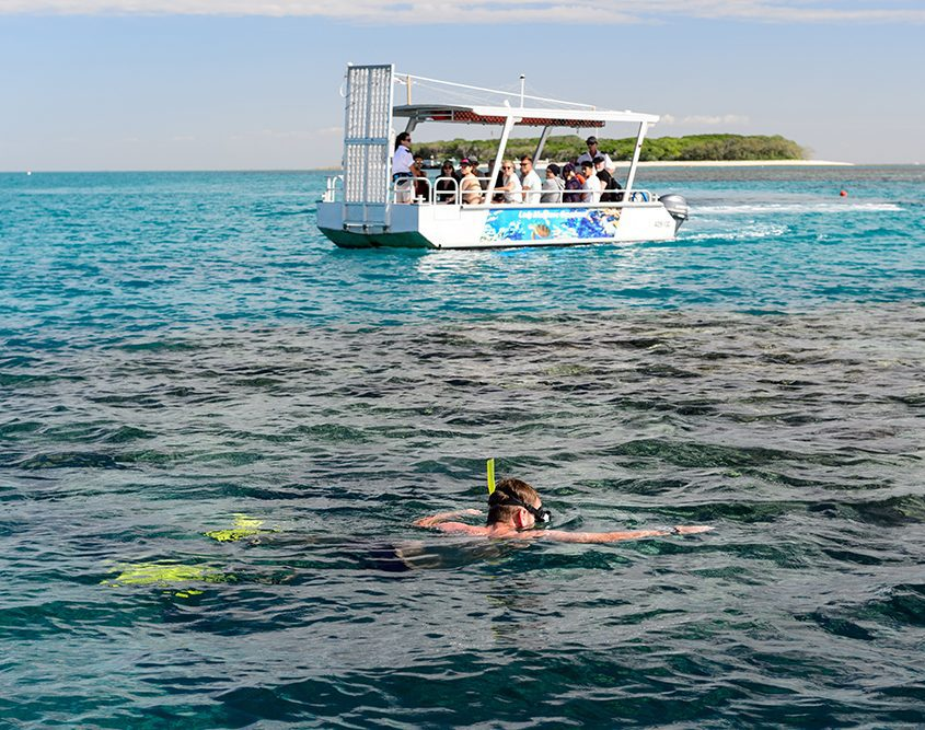 natures calendar lady musgrave island august events