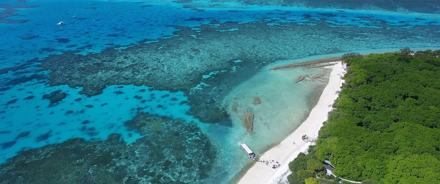 Lagoon Lady Musgrave Experience Great Barrier Reef tours
