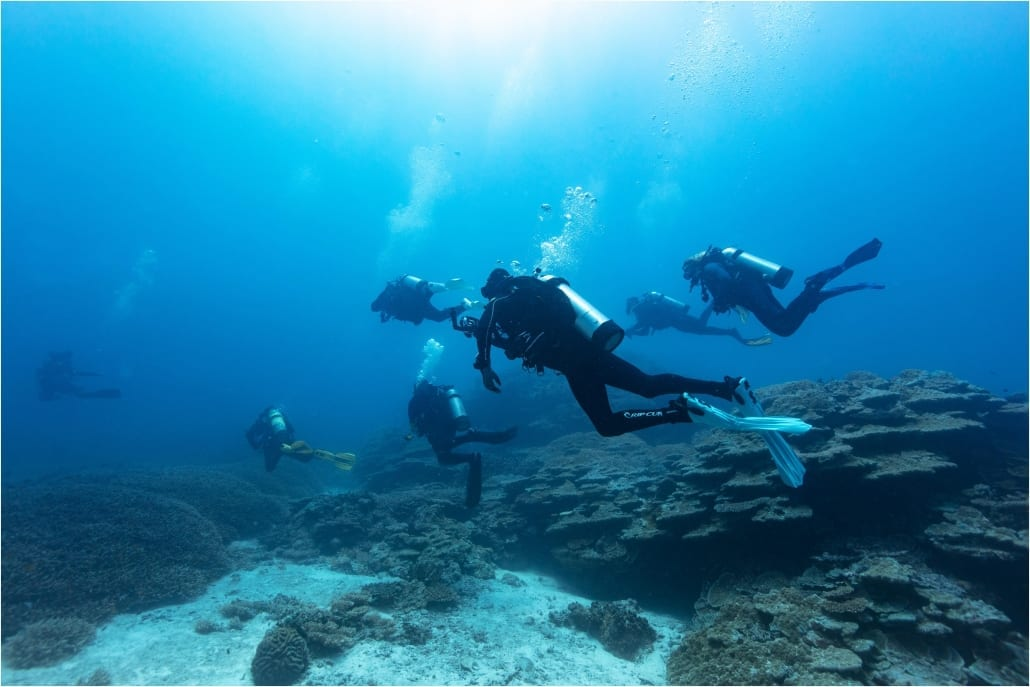 Padi Open Water Dive Course - Learn to scuba dive with the best in the industry