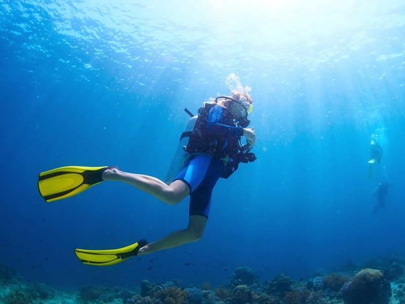 Scuba Diving Instructors Bundaberg Region - Southern Great Barrier Reef
